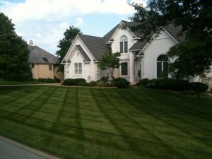 Belton MO lawn mowing