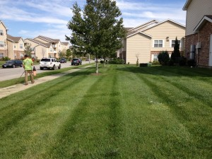 commercial lawn mowing kansas city mo